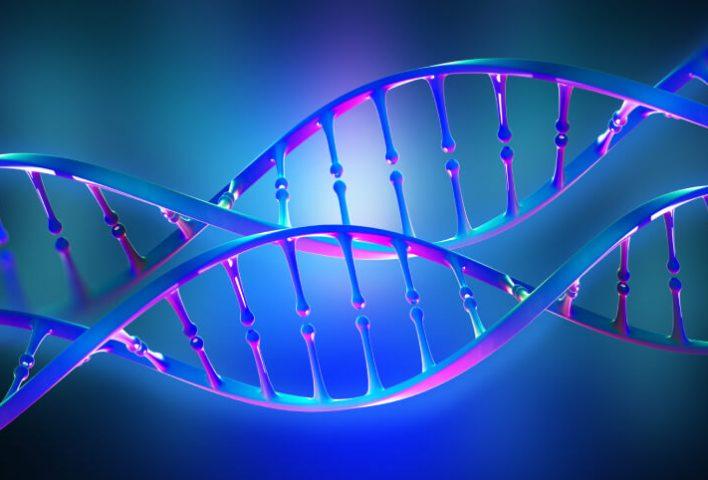 ľudský genóm